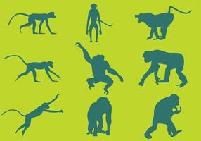 Monkey Silhouettes Vectors
