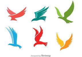 Logotipo colorido del halcón del vuelo