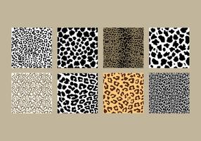 Leopard Print Pack