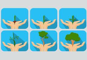 Mantenha os Vetores Sprouting Verde