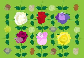 Roses Vector Background
