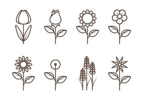 Flower Outline Vectors