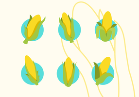 Pack Of Ear Of Corn Vector Flat Icons