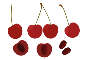 Free Cherries Vector