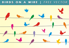 Birds On A Wire Free Vector