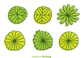 Plant Top View Cartoon Style Vectors