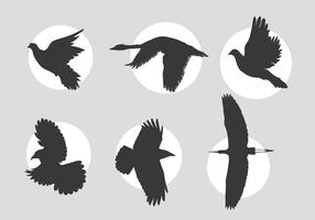 Birds in flight vectors
