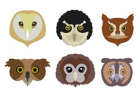 Vector Set of Owls