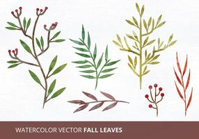 Watercolor Vector Leaves