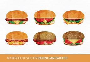 Panini Sandwich Vector Illustration