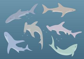 Free Shark Vector