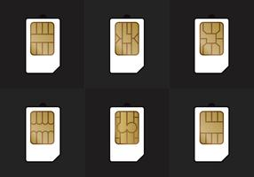SIM Card Types Vector