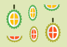 Free Durian Fruit Vectors