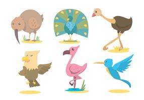 Exotic Bird Vector Set
