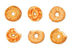Bagel Illustration