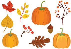 Free Pumpkin Vectors