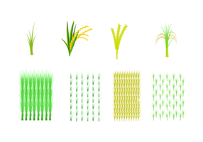 Free Rice Field Vector