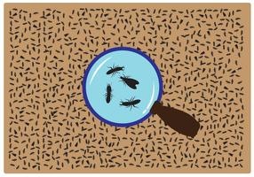 Termite Magnifying Glass Vector