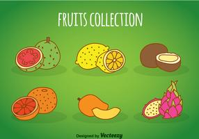 Fruits Cartoon Collection