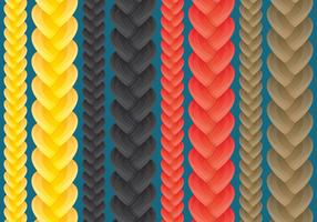 Braid Vectors