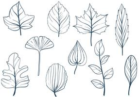 Free Leaves Vectors