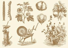 Cotton Old Style Drawing Vectors
