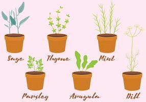 Vector Herbs in Pots