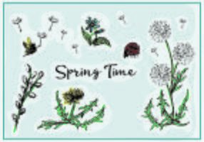 Free Spring Vector Flowers