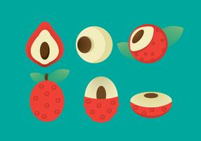 Free Lychee Vector Icon