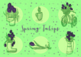 Free Icons of Vector Tulips