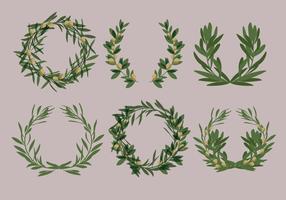 Laurel Olive Wreath Vectors