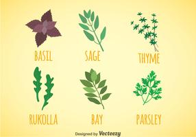 Herbs And Spices Colors Icons Vector