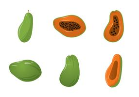 Free Papaya Vector Illustration