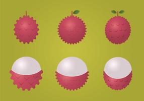 Free Lychee Vector Illustration