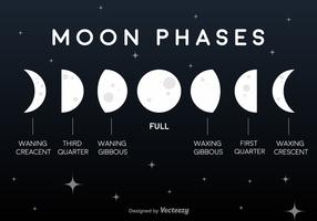 Vector Flat Moon Phases Icons