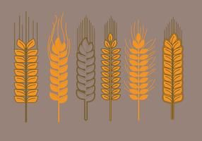 Wheat Stalk Vectors
