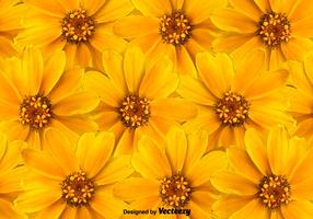 Vector Yellow Flowers Background