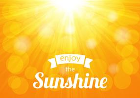 Free Shiny Sunburst Vector
