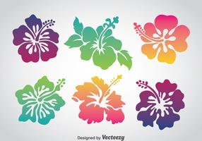Colorful Hawaii Flower Vector Set