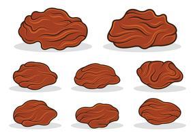 Raisins Icon Vector