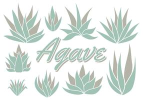 Free Maguey Vector