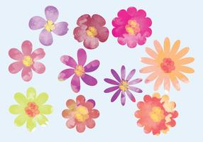 Vector Watercolor Bright Flower Elements
