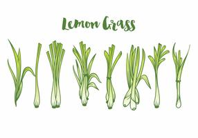 Lemon Grass Icon Set