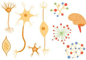 Free Neuron Vectors