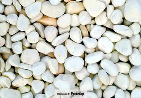 Pebble-Stone Path Close Up - Vector Background