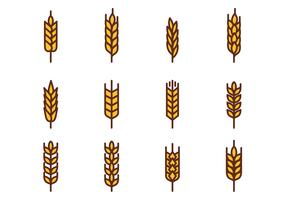 Free Wheat Vector