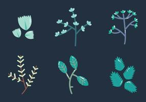 Free Thyme Vector Graphic 2