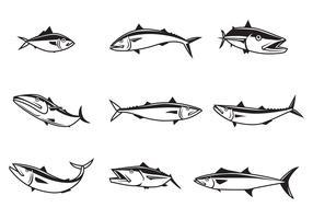Free Mackerel Vectors