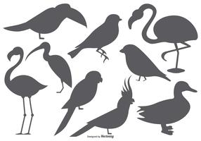 Vector Bird Shape Collection