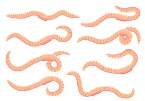 Earthworm Vectors